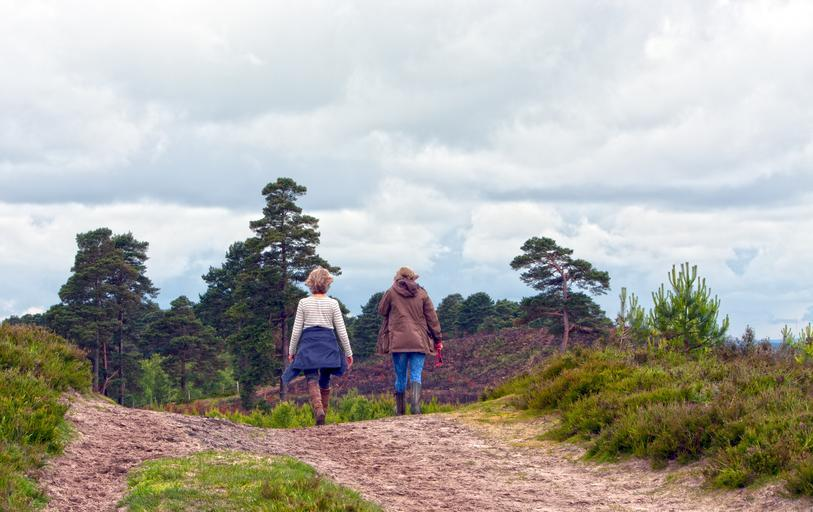 Walk your way to a healthy Brain